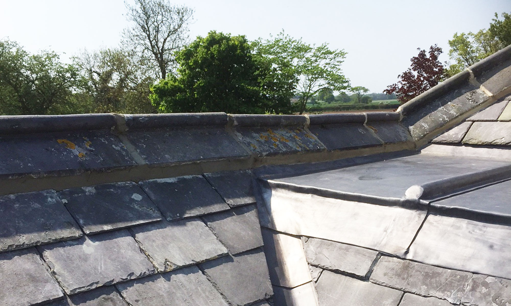 Robertsons Building Amp Roofing